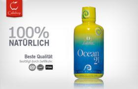 Ocean 21 (948 ML)