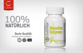Digestive Enzymes (100 Tab)