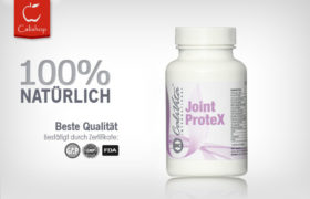 Joint ProteX (90 Tabletten)