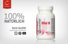 Vital B (90 Tabletten)