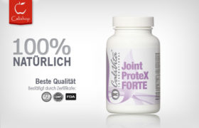 Joint ProteX FORTE (90 Tab)